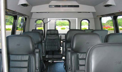 10 Passenger Luxury Van